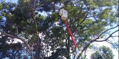 La DPEC realiza trabajos de normalización y mantenimiento en localidades del interior