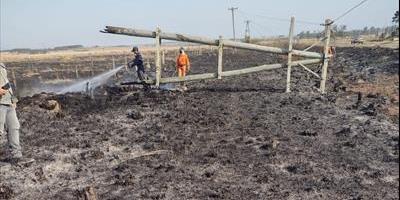 La DPEC solicita evitar la quema de pastizales por los daños al sistema eléctrico